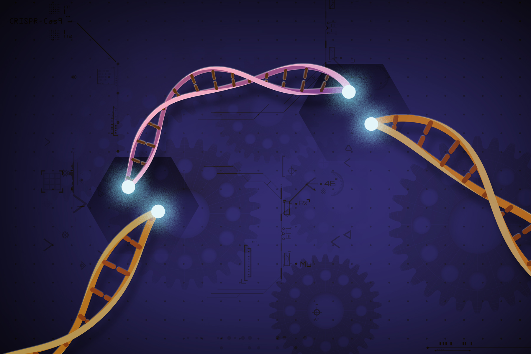 CRISPR Hits Another Snag; But It's Two Steps Forward, One Step Back