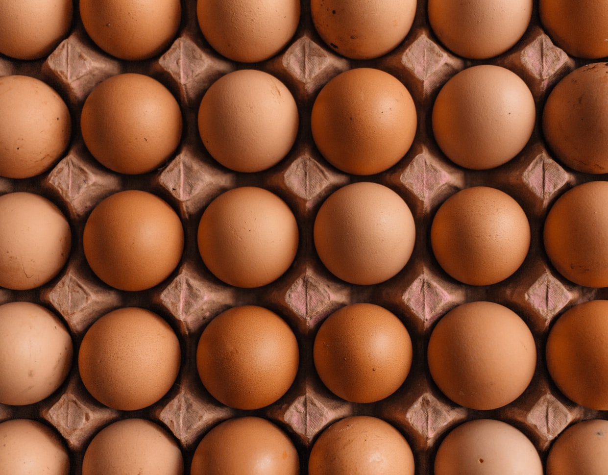 Egg & Poultry Stock Prices Have Diverged in the US. What's Next?