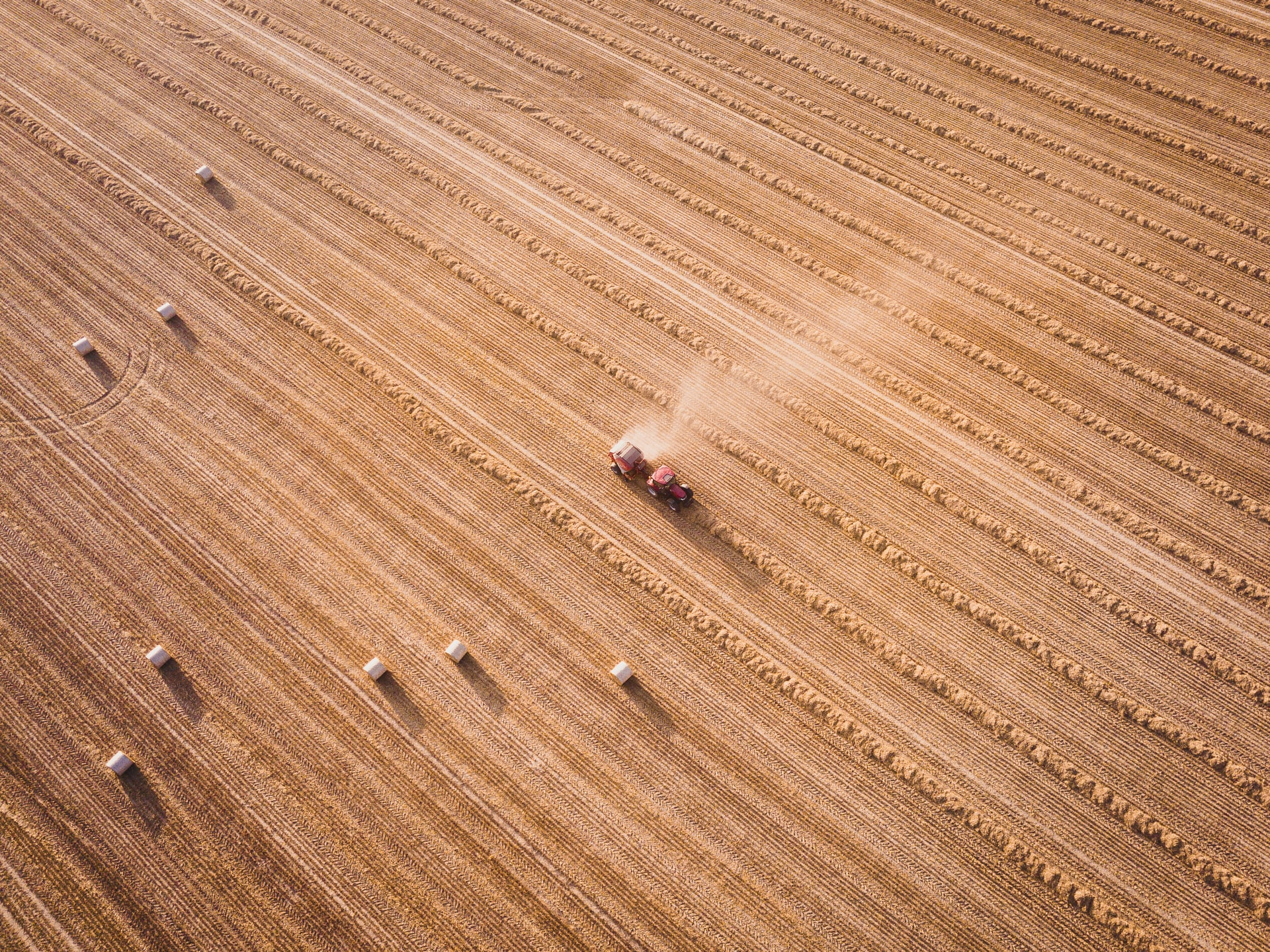 Crop Prices Move Higher on Continued Drought Concerns, USDA Lowers Yield Forecasts